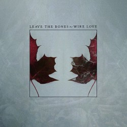 Wire Love Leave The Bones Cover