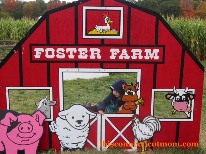 Foster Family Farm-Photos