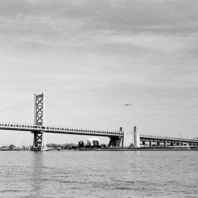 Benjamin Franklin Bridge and Seagull