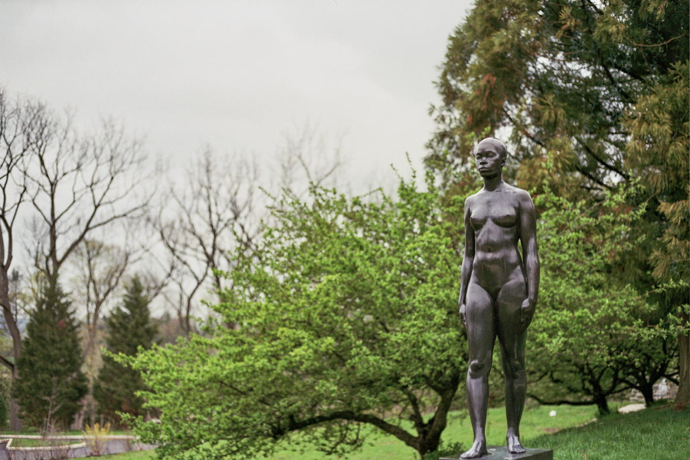 Outdoor Sculpture at Woodmere Art Museum