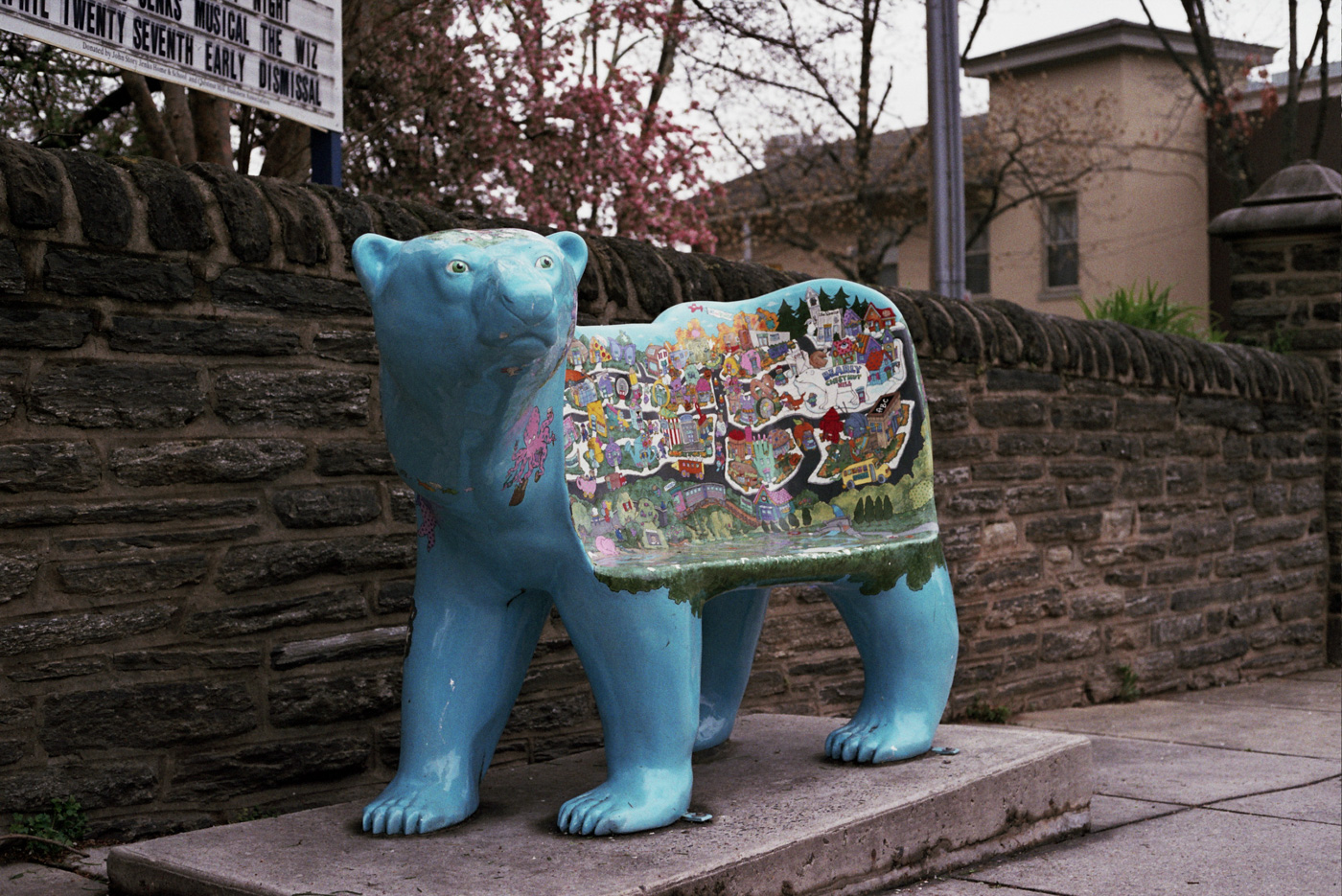 Bear Seat in Chestnut Hill