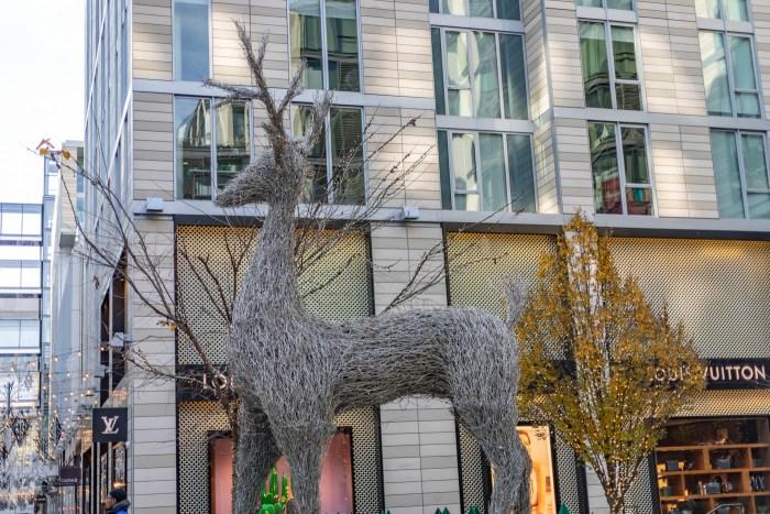 Washington Reindeer