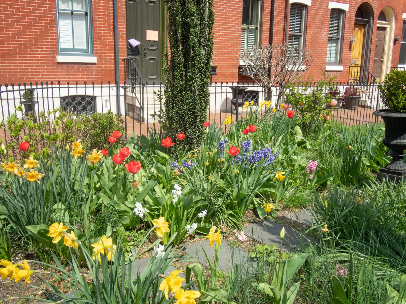 St. Albans Street Garden