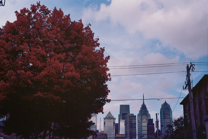 Autumn Tree and Philly Skyline