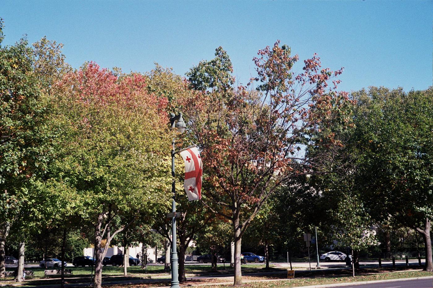 Autumn along the Benjamin Franklin Parkway