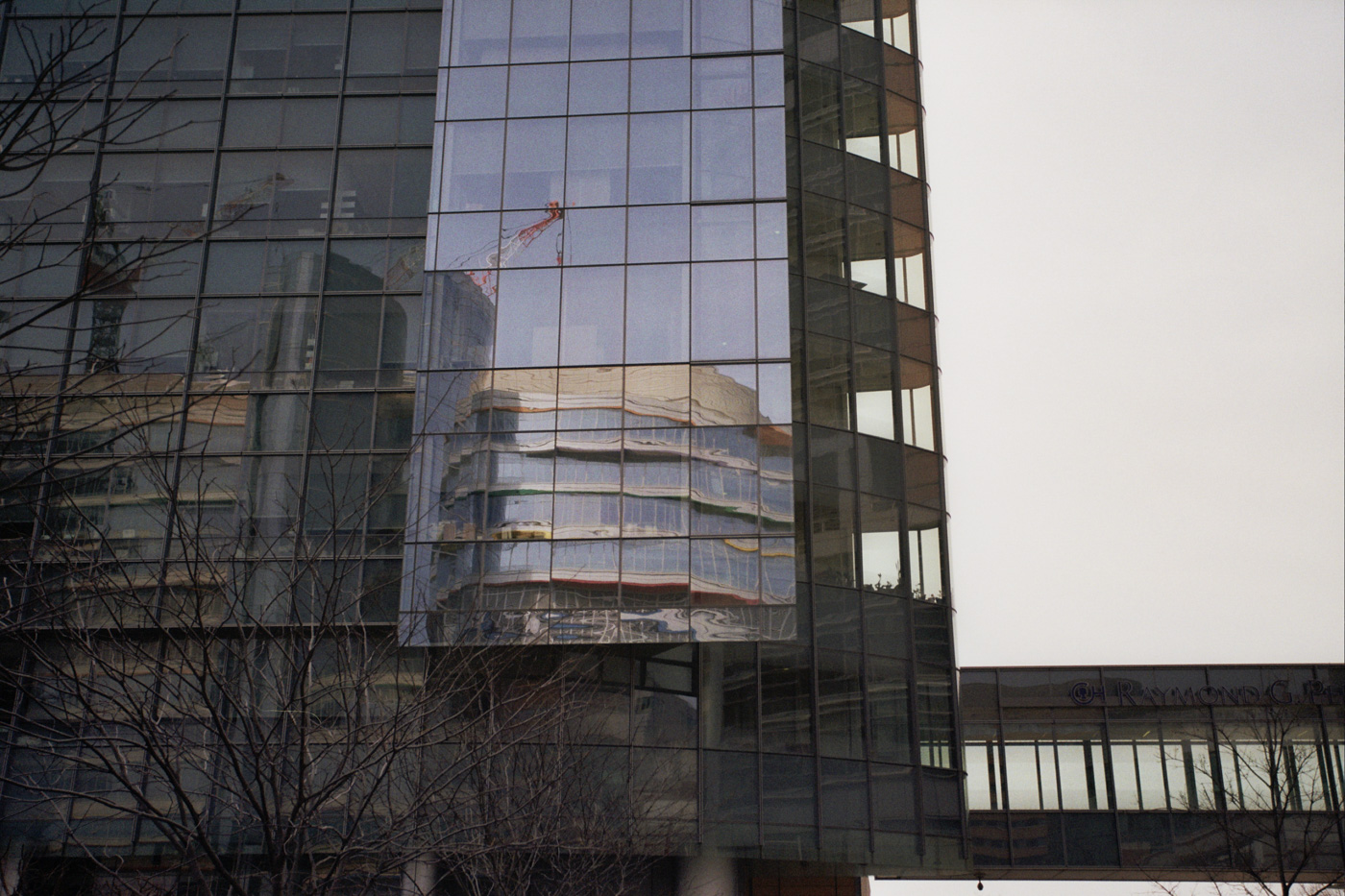 Reflection of the CHOP Buerger Center