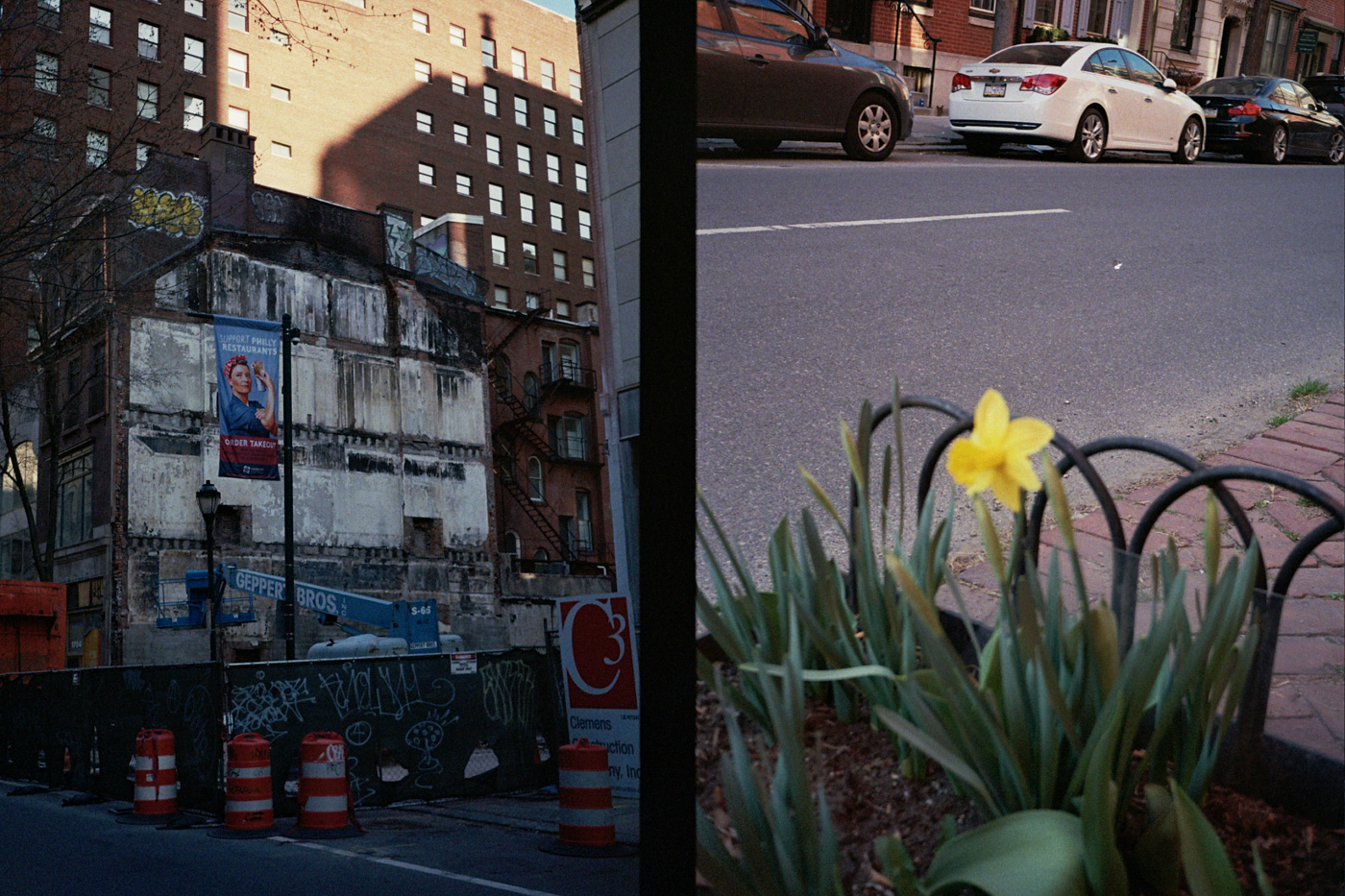 Building Demolition and a Daffodil