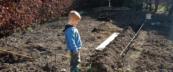 the best crops for kids and how to grow them