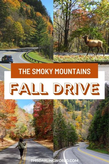 A Fall Drive Through the Smoky Mountains & Blue Ridge Parkway
