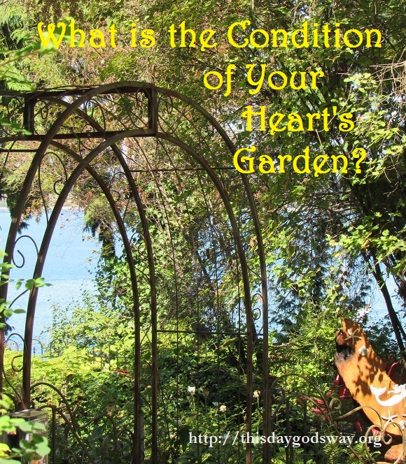 What is the Condition of Your Heart's Garden?