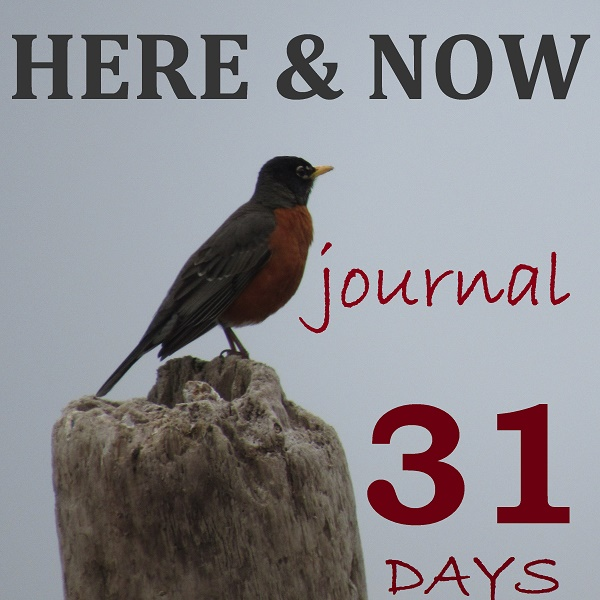 Day One. Here & Now Journal – The Why.