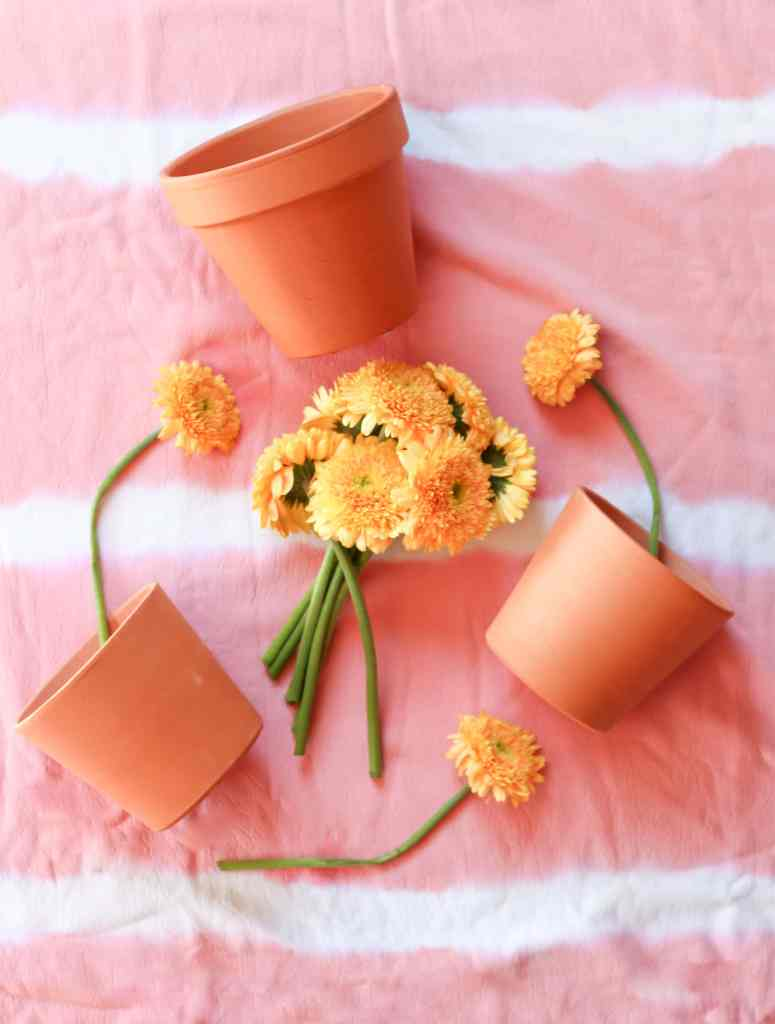Terra cotta pots with yellow flowers.