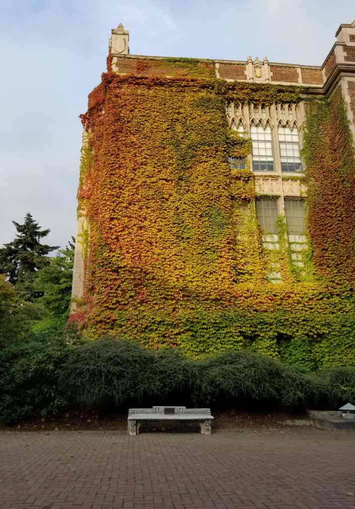 Brick building covered in vines.