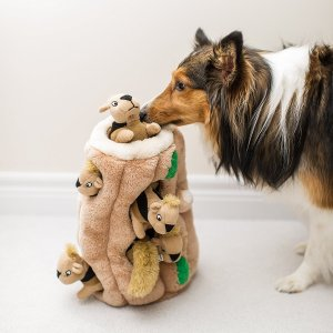 dog puzzle / keep dogs busy while at work