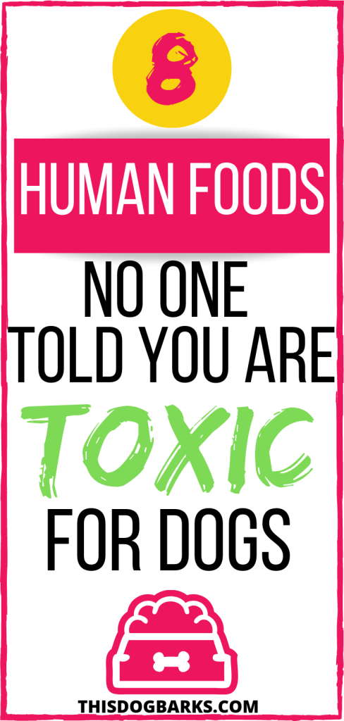 Are you feeding your dog any of these human foods that are actually toxic foods for dogs? Find out if you might unknowingly be putting your pet at risk with this list of poisonous foods for dogs. You might be surprised at which foods dogs can't eat!