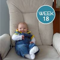 Tales From the Crib: Week 18