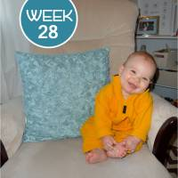 Tales From the Crib: Week 28