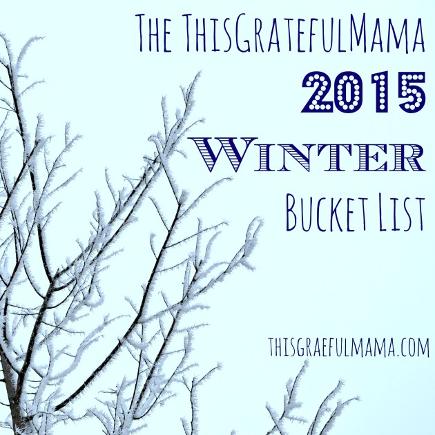 The ThisGratefulMama 2015 Winter Bucket List | thisgratefulmama.com