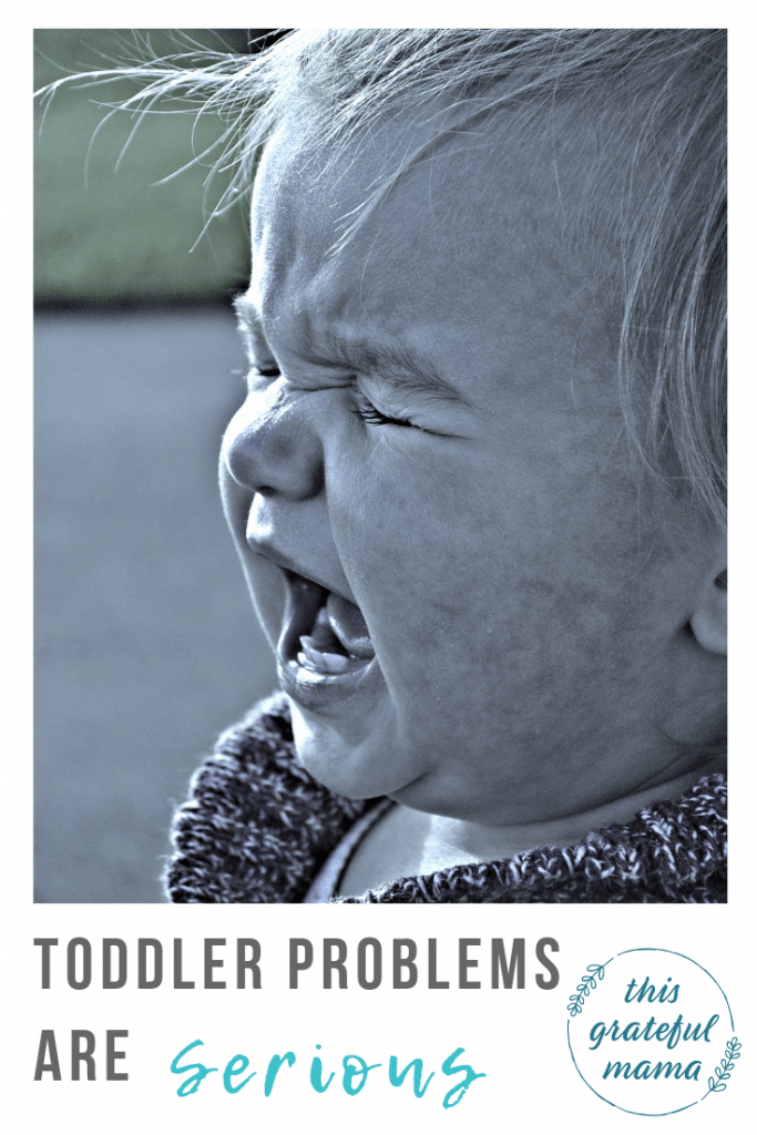 25 Real Life Tear Inducing Toddler Problems |thisgratefulmama.com #toddlerproblems #toddlerapproved #momlife #motherhood #mommylife