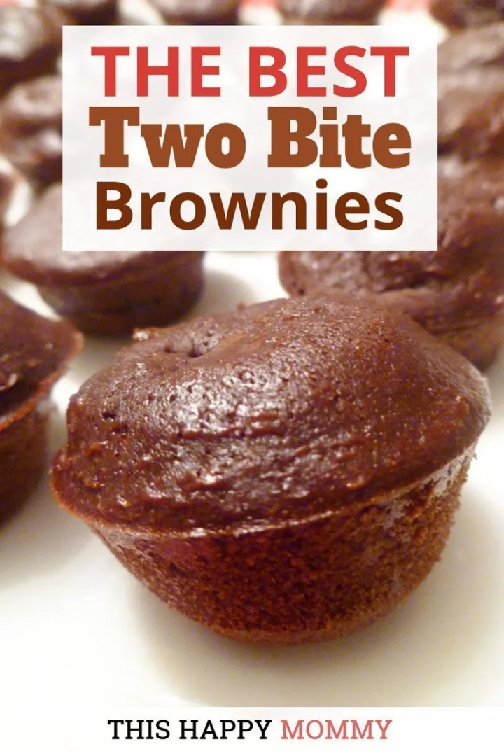 The BEST Two Bite Brownies!! Decadent, chocolatey brownies that are sweet, satisfying, and yes, low fat. The brownies are so rich and creamy, no one will ever know that they are healthier. | Simple and Light Dessert | Healthy Homemade Brownie | Clean Eating Desserts | Greek Yogurt Dessert Recipes | Healthy Chocolate Dessert Recipes | Easy to Make Sweet Treat Desserts | #lowfatdessert #healthydessertrecipe #chocolatedessertrecipe | thishappymommy.com