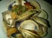 clams ob