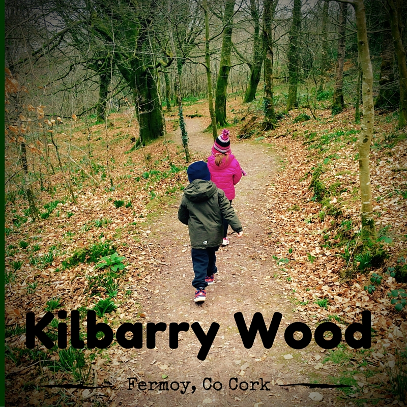 Kilbarry Wood, Fermoy