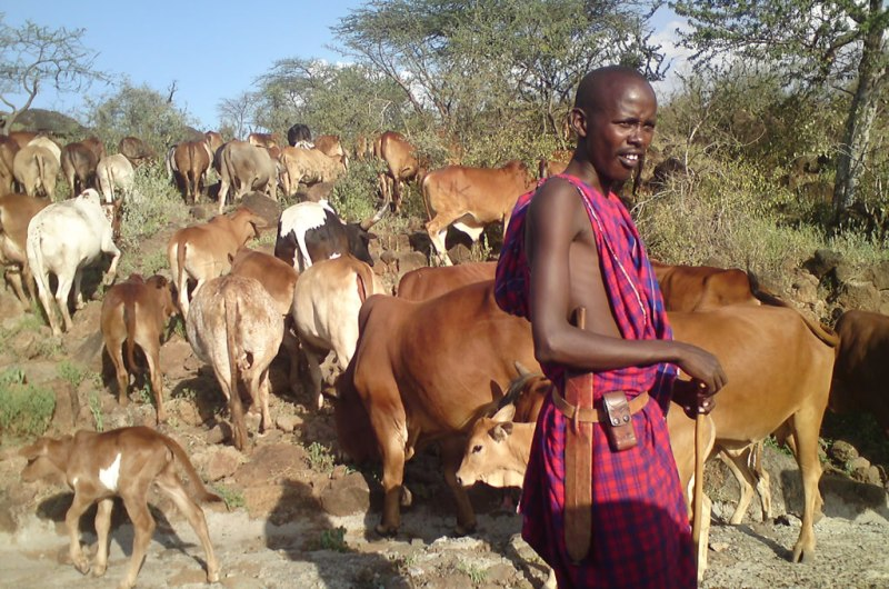 User Research 01: Everyone has a phone - also the Massai!