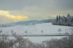 Snow field, as far as the eyes can see, Zurich Switzerland.