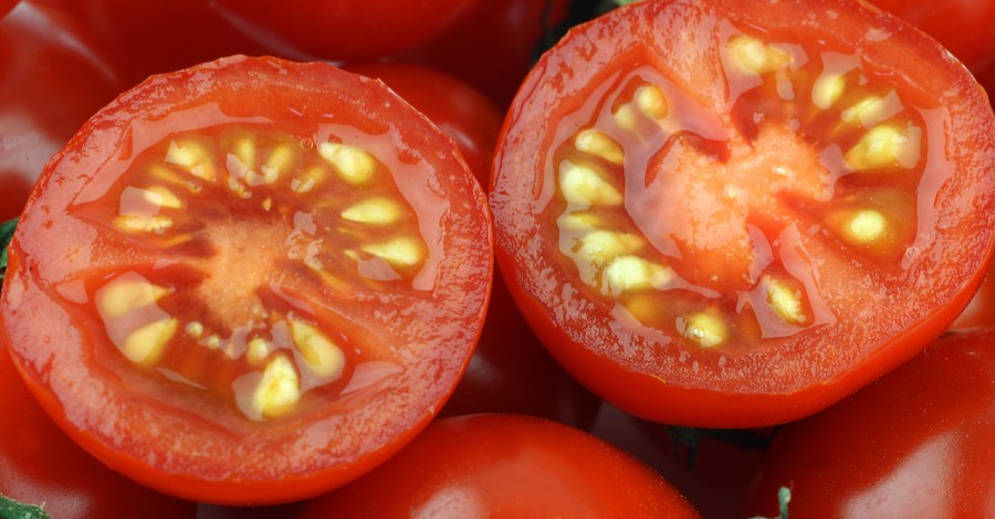 Saving Tomato Seeds – How To Save Heirloom Tomato Seeds For Next Year!