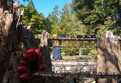 Cheekwood Gardens