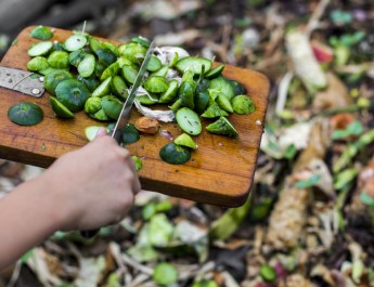 what to add to a compost pile