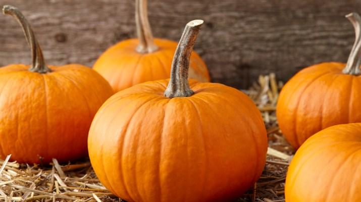 preserving pumpkins