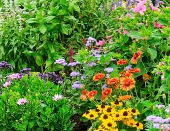 keep flowerbeds weed free
