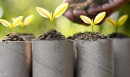 3 Great Ways To Make Seed Starting Containers From Recycled Materials – For Free!