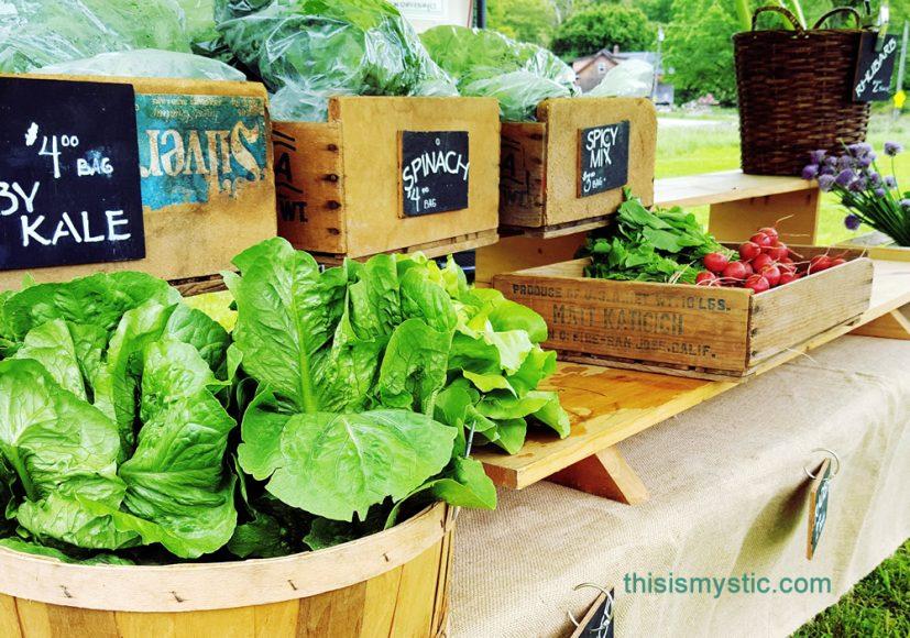 Farmers Markets in Mystic area
