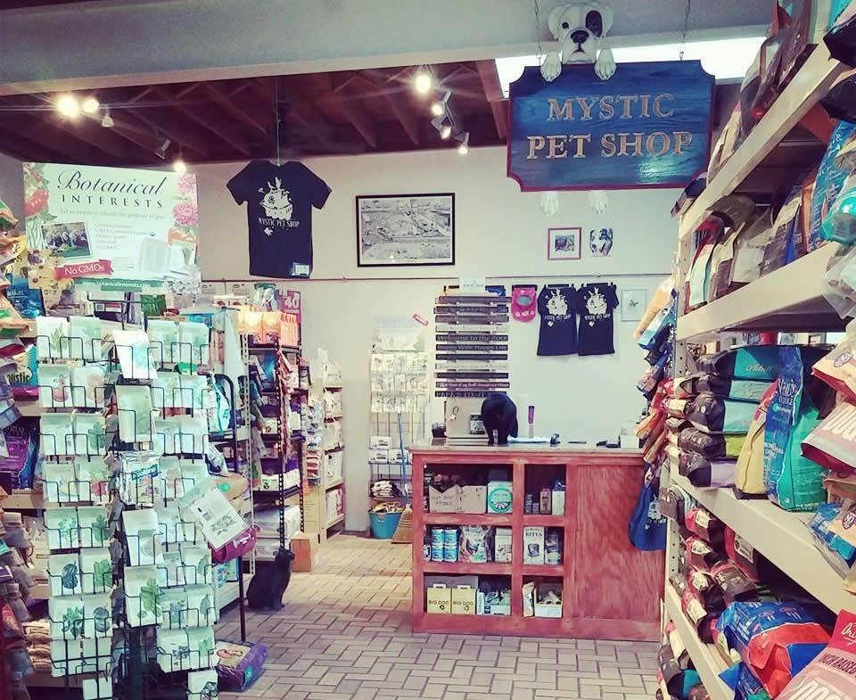 Mystic Pet Shop