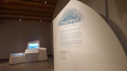 learn about Murmur and pingos