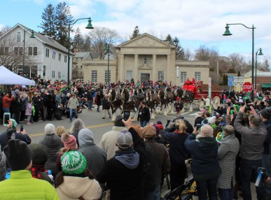 clydesdales-in-mystic4