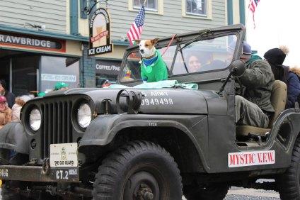 jeep-dog
