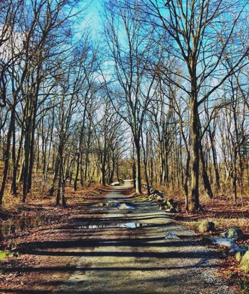 Mystic's Winter Charm | This Is Mystic, CT