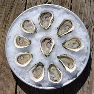 Oyster Festival at Mystic Seaport