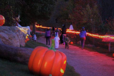 halloween-trail-1