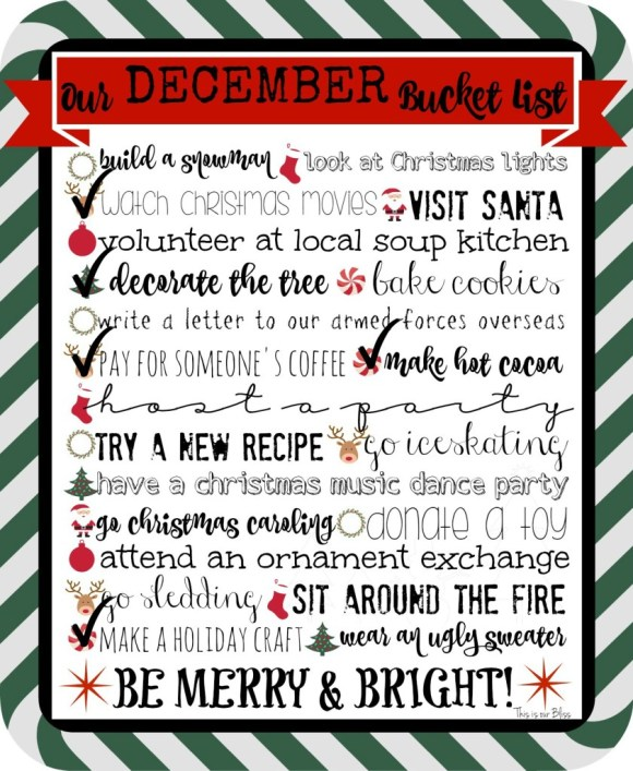 December bucket list with checks - 2015 - This is our Bliss