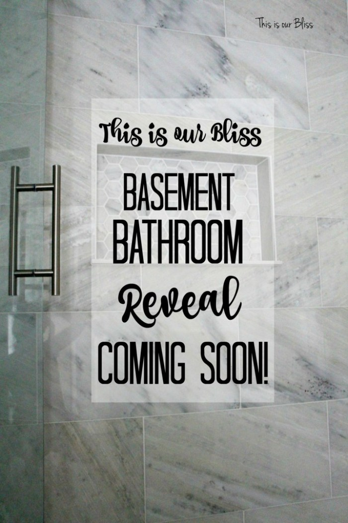 TIOB basement project - basement bathroom - marble tile & marble hexagon niche - reveal coming soon - This is our Bliss