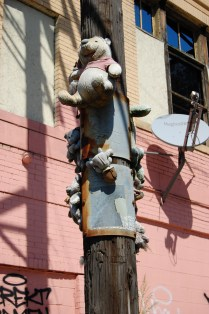 Creepy stuffed animals stapled to electrical pole.
