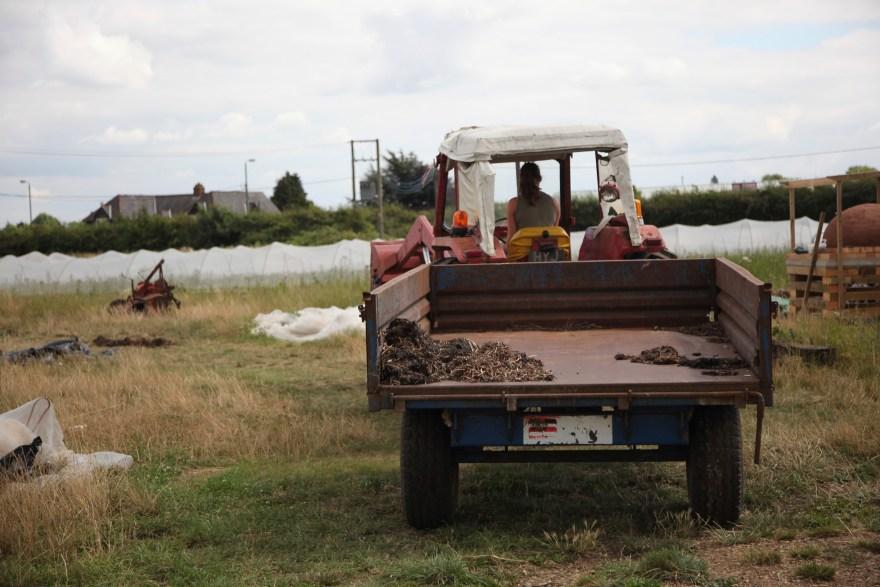 Tractor on Sutton Community Farm