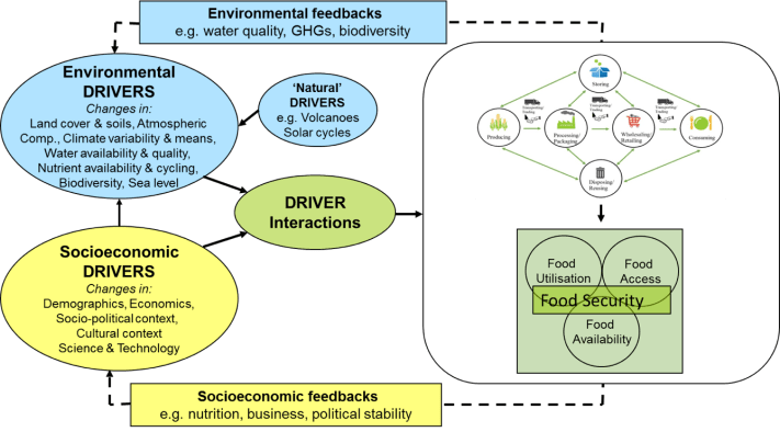 Representation of a food system (Arnall and Pope, 2015)