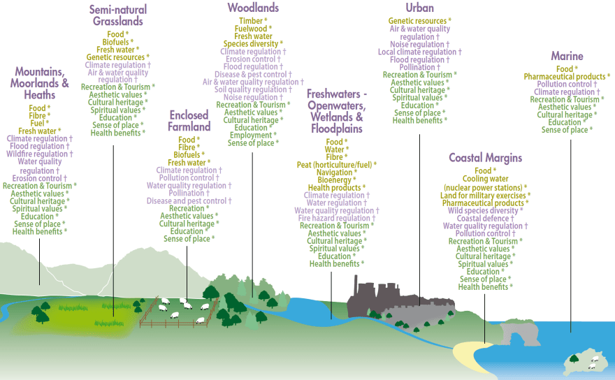 Figure 5: Eight broad habitats and examples of the goods and services derived (UNEP-WCMC, 2011).