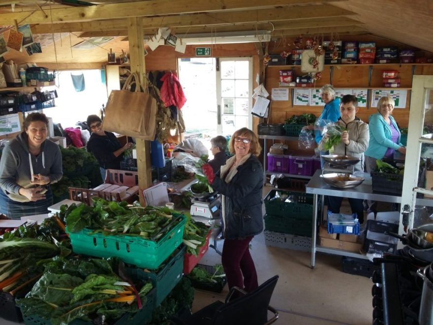 Veg Shed packing