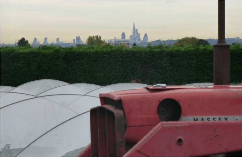 London skyline from Sutton Community Farm